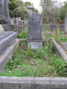 BECK family plot | Flickr - Photo Sharing!