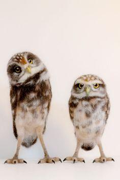 Needle Felted Burrowing Owl Life Size by YvonnesWorkshop on Etsy