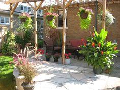 greenhouse for home garden for garden greenhouse One Stop Gardens