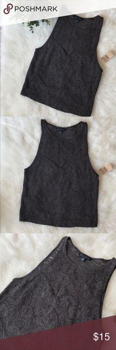 """AE Soft and Sexy Lace Sleeveless Top Size Large AE Soft and Sexy lace crop top, size L. Top is new with tags. Color is Gray, stock picture is for reference purposes. Front part of Top is lined. Please feel free to ask questions.   Size: Large Fabric: 99% nylon, 1% elastane.  Measurements: shoulder to hem 20"""", pit to pit 14"""". American Eagle Outfitters Tops"""