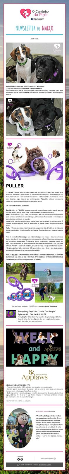 NewsletterdeMarço Happy, Ser Feliz, Being Happy