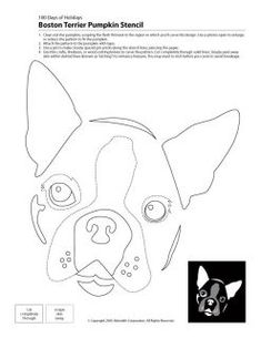 boston terrier pumpkin templates - Google Search