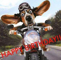 Love ya always! Angela - Happy Birthday Funny - Funny Birthday meme - - The post Happy Birthday Bill! Love ya always! Angela appeared first on Gag Dad. Bild Happy Birthday, Happy Birthday Biker, Happy Birthday Funny Dog, Motorcycle Birthday, Birthday Wishes Funny, Happy Birthday Pictures, Happy Birthday Messages, Happy Birthday Greetings, Dog Birthday