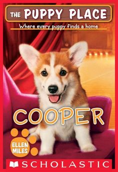 Rehearsing for a play, Charles meets a homeless corgi with an over-the-top personality and discovers while trying to find the pup a home that he does not feel comfortable onstage without his new canine friend.