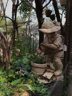 母の手作りした庭です。
