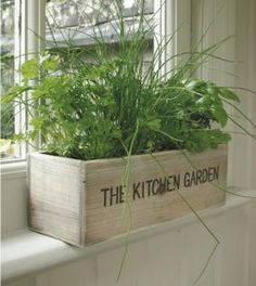 Like in the good old days, there's a tried and true way to grow basil, chives and parsley. Plant them in a wooden box, sit them on a sunny window sill and water as often as needed.