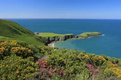 Reason number 326 for visiting the Wales Coastal Path this year!