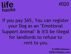 If you pay $65, you can register your dog as an emotional support animal and it'll be illegal for landlords to refuse to rent to you.