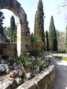 Jardin des Plantes, Montpellier - http://fromworldwithlove.com/