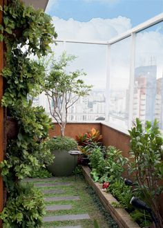 Para trazer o clima mineiro a esta cobertura, pedido da moradora, a paisagista Juliana Freitas usou o corredor para criar uma horta. Rooftop Terrace, Terrace Garden, Indoor Garden, Outdoor Gardens, Home And Garden, Balcony Gardening, Balcony Design, Garden Design, Outdoor Spaces
