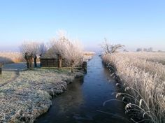 Winter at Sint Jansklooster at national park 'De Wieden'.