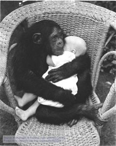 Monkey and a baby... so adorable