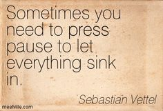 Sometimes you need to press pause to let everything sink in. Sebastian Vettel