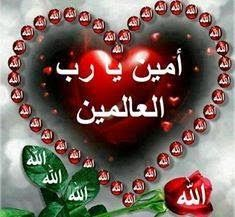 Good Morning Rose Images, Good Morning Beautiful Gif, Good Morning Roses, Beautiful Art Pictures, S Love Images, Beautiful Nature Wallpaper, Islamic Quotes Wallpaper, Islamic Love Quotes, Mom I Miss You