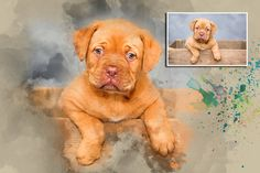 Custom Portrait, Custom pet portrait. Original watercolor painting. Dog portrait. Pet   portrait. Pet portrait comission. Dog lover. Dog art by GoshaArtStudio on Etsy