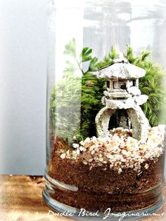 asian landscape garden terrarium with miniature plants. Black Bedroom Furniture Sets. Home Design Ideas