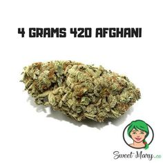 Medical Marijuana, Herbs, Link, Herb, Spice