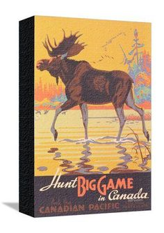 Canada Travel Poster, Moose Posters at AllPosters.com