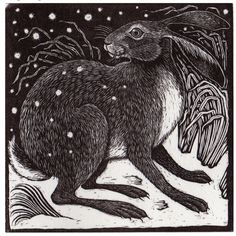 Hare watching its six by the light of the Moon and stars up above!