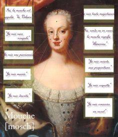 Histoire de la Mouche au XVIIIè siècle