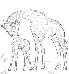 Baby Giraffe And Mother Coloring Page From Giraffes Category Select 20946 Printable Crafts Of