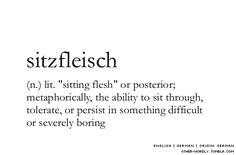 pronunciation | 'sitz-flIsch