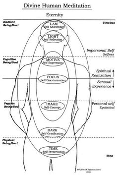 Very interesting diagram Dr David Hawkins, Meridian Energy, Empath Abilities, Brain Mapping, Indian Philosophy, Reiki Room, Chakra Affirmations, Body Anatomy, Spirit Science
