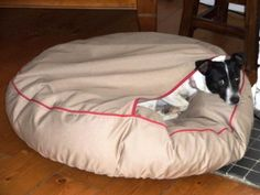 Fox terrier, Molly inside the pouch of her Barka Parka Snug pet bed Super Sets, Fox Terrier, Parka, Snug, Pouch, Pets, Sachets, Hoodie, Porches