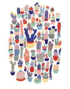 succulents » melinda boyce