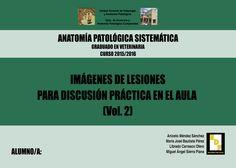 #Editorial. Anatomía Patológica Especial y Sistemática. Tomo II. Aniceto Méndez, Mª José Bautista, Librado Carrasco y Miguel Ángel Sierra.