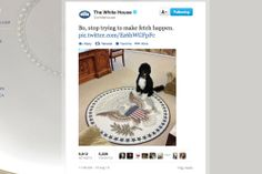 The White House Made a Mean Girls Joke on Twitter, and It Was Awesome