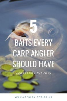 Every wondered what baits you should be taking fishing? Sometimes you might be missing something that could open opportunities for awesome fishing. For more info check out our article on the 5 baits every carp angler should have #carpfishing #fishingtips #bigcarp Carp Fishing Tips, Carp Fishing Bait, Fishing Rigs, Walleye Fishing, Fishing Knots, Fishing Guide, Sea Fishing, Fishing Lures, Women Fishing