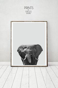 Elephant Animal Print Boys Room Wall Art Kids by PrintsMiuusStudio