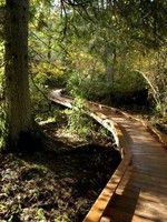 Evans Creek Preserve — Washington Trails Association
