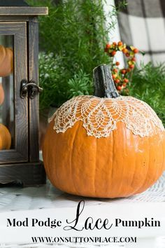 Fall Porch Decor Ideas that are easy and DIY. Also has the link that shows how to make this cute little lace pumpkin!: Fall Porch Decor Ideas that are easy and DIY. Also has the link that shows how to make this cute little lace pumpkin! Autumn Decorating, Pumpkin Decorating, Porch Decorating, Decorating Ideas, Fall Pumpkins, Halloween Pumpkins, Halloween Decorations, Fall Porch Decorations, White Pumpkins
