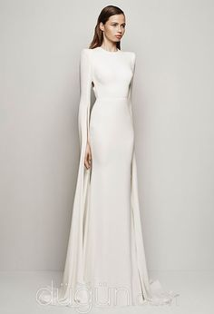 A fitted white dress with a cape coming down the back of it. Worn to a political dinner.