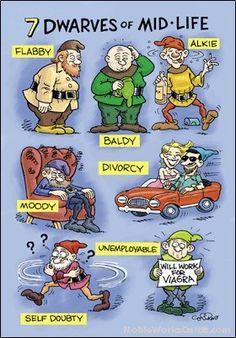 7 dwarfs of menopause cartoons
