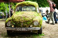 Photographer Paul McGee snapped a shot of this awesome VM Beetle encased in moss at the Belladrum music festival in Scotland