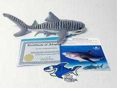 Shark Angels Store - Adopt a Shark (Tiger), $50.00 (http://sharkangels.mybigcommerce.com/adopt-a-shark-tiger/)