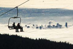 go skiing.