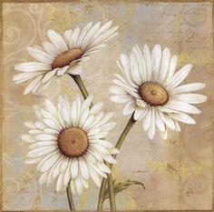 Daisy ...Álbum de imágenes para la inspiración | Aprender manualidades es facilisimo.com