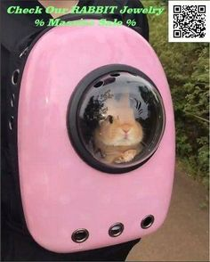 This is Major Tom to Ground Control. Pet Bunny Rabbits, Pet Rabbit, Ruby Rabbit, Dwarf Rabbit, House Rabbit, Rabbit Food, Cute Baby Bunnies, Funny Bunnies, Cute Little Animals