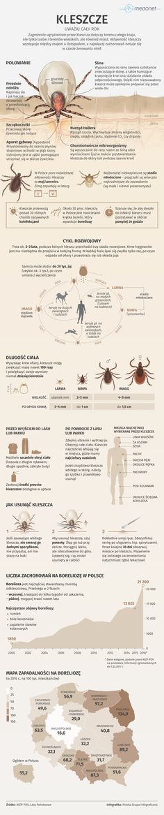 Life Guide, Molecular Biology, Midwifery, For Your Health, Good To Know, Natural Health, Life Hacks, Infographic, Flora