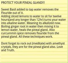 How To Protect Your Pineal Gland & Remove Fluoride From Your Water