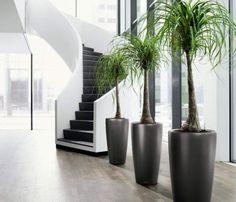 Fake it, till it you make it : home saving decorating ideas | CCD Engineering Ltd