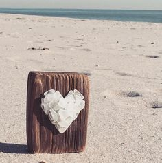 """(@glass.mermaid) on Instagram: """"Driftwood and seaglass compliment each other so nicely. Made this from my beach finds for the…"""""""