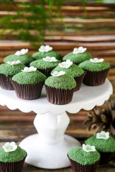 Boho enchanted forest birthday party cupcakes! See more party planning ideas at CatchMyParty.com!