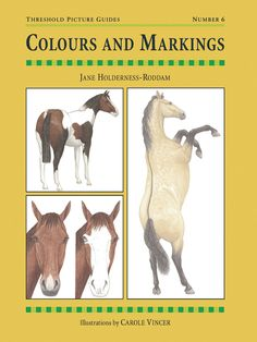 Threshold Picture Guide No. 6 Colours and Markings by Jane Holderness-Roddam | Quiller Publishing. A straightforward guide to identifying the various colours and markings of horses and ponies in order to recognise the distinguishing features of different breeds. #horse #pony #breed #features #colour #markings