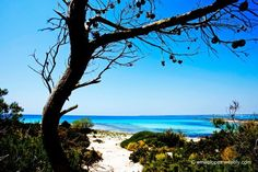 http://fineartamerica.com/featured/summer-days-emilio-lopez.html