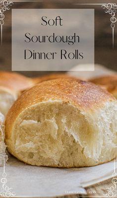 Sourdough Dinner Rolls, Easy Sourdough Bread Recipe, Sourdough Starter Discard Recipe, Dinner Rolls Recipe, Wild Yeast Bread Recipe, Yeast Starter, Four, Cooking Recipes, Amish Recipes